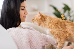 Close up of owner with red cat in bed at home stock photos