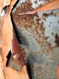 Close up oxidado do metal da casca Fotos de Stock Royalty Free