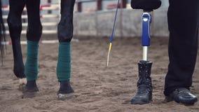 Close-up, paardbenen, rewound met verband en mannelijke benen van een gehandicapte ruiter de mens heeft een prothese in plaats va stock videobeelden