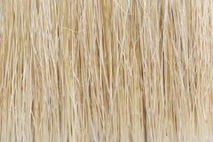 Close up paint brush Stock Photography