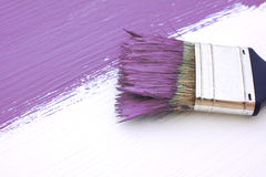 Close-up of paintbrush painting a white board purple Royalty Free Stock Image
