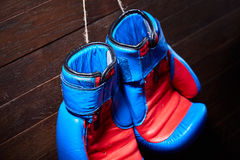 Close-up of the pair of blue and red boxing gloves hanging in a wooden wall. Royalty Free Stock Photo