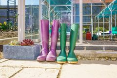 Pair of purple and green Wellington Boots Royalty Free Stock Photos