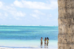 Close up of a palm trunk, turquoise ocean and sexy bikini girls Royalty Free Stock Image