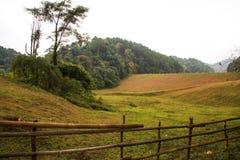 Pang Ung, Mae Hong Son, Thailand. Close up Pang Ung, Mae Hong Son, Thailand stock photos