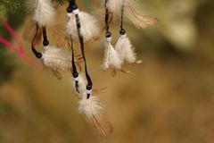 Dream Catcher in the field stock photography