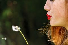Young red haired woman blowing a dandelion royalty free stock photos