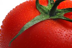 Close up of part tomato Stock Photos