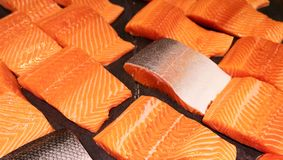 Close up pattern of Fresh red  salmon fillet.  Royalty Free Stock Photos