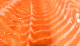 Close up pattern of Fresh red  salmon fillet.  Royalty Free Stock Images