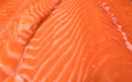 Close up pattern of Fresh red  salmon fillet.  Stock Photos