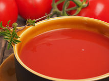 Close up of pazpacho Stock Photography