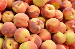Close up of peaches Stock Images