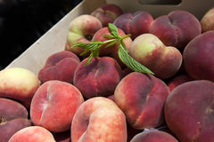 Close up of peaches Stock Photography