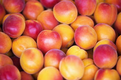 Close up of peaches at fruit stand Stock Photography
