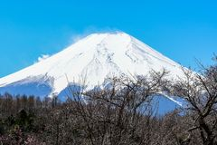 Peak of mount Fuji with snow cover on the top. Close up the peak of mount Fuji with snow cover on the top stock image