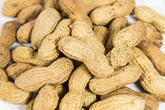 Close-up of peanut Stock Photo