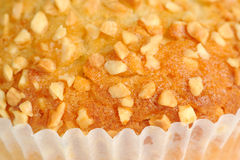 Nut Muffin Close-Up Royalty Free Stock Photography