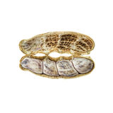 Close up peanut. Yong fresh peanut isolated on white background Stock Image