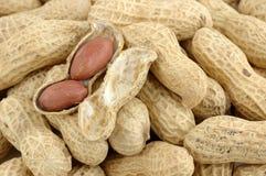 Close up of peanuts Royalty Free Stock Image