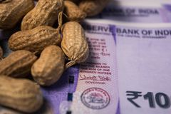 Close up of Peanuts or Groundnuts with indian currency below on isolated background stock image