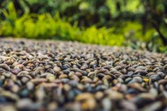 Close up of pebble stones on the pavement for foot reflexology, selective focus.  royalty free stock photo