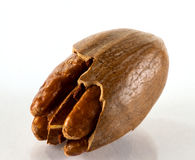 Close up of pecan nut stock photo