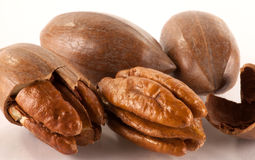 Close up of pecan nuts. A close up of loose shelled and unshelled pecan nuts royalty free stock photos