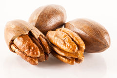 Close up of pecan nuts Royalty Free Stock Photos