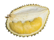 Close up of peeled durian isolated on white background Stock Photography