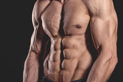 Close up perfect abs. Sexy muscular male torso six packs. Handsome shirtless muscular young man Royalty Free Stock Photography