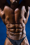 Close up on perfect abs. Strong bodybuilder with six pack Royalty Free Stock Image
