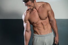 Close Up On Perfect Abs royalty free stock photo