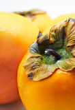 Close up of persimmon. Selective focus Stock Photography