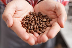 Close-up of person holding coffee beans Royalty Free Stock Photo