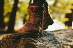 Close up of person walking on tree trunk stock image