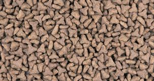 Close-up of pet dry food. Pile of cat or dog pellets stock footage