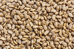 Close up pet food. Pattern Stock Image