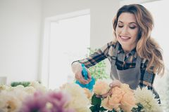 Close up photo beautiful adorable careful she her lady many roses retail seller assistant hands arms check flowers. Condition pulverize watering opening service royalty free stock image