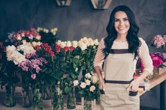 Close up photo beautiful adorable she her lady many roses vases retail seller assistant employee hands arms pocket. Freshness ideal flowers condition opening stock image