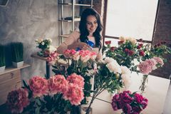 Close up photo beautiful adorable she her lady many roses vases retail seller assistant hands arms check flowers. Condition pulverize fertilizer water opening royalty free stock photos