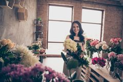 Close up photo beautiful adorable she her lady many vases retail seller assistant employee hands arms hold big white stock image