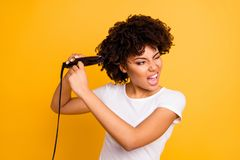 Close up photo beautiful amazing she her dark skin lady curler hands yelling ouch suffer hair curls making straight. Struggle wear casual white t-shirt isolated stock photography