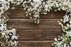 Close-up photo of Beautiful white Flowering Cherry Tree branches. Heart shape on vintage wooden background.  Wedding, engagement or betrothal concept. Top view Stock Photos