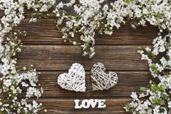 Close-up photo of Beautiful white Flowering Cherry Tree branches. With two hearts letters love. Wedding, engagement or betrothal concept on vintage wooden Stock Images