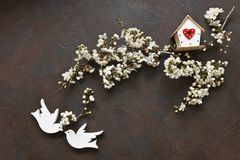 Close-up photo of Beautiful white Flowering Cherry Tree branche with two wooden birds and birdhouse.s. Close-up photo of Beautiful white Flowering Cherry Tree royalty free stock image