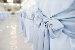 Close-up photo of big blue bows tied on white wedding chairs. Royalty Free Stock Image