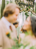 The close-up photo of the blurred newlyweds and their reflection in the mirror. The close-up photo of the blurred newlyweds and their reflection in the mirror royalty free stock photo