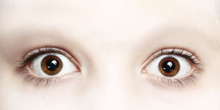 Close up photo of boy eyes wide open. Close up photo of boy brown eyes wide open Royalty Free Stock Image