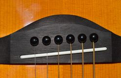 A close-up photo of a brown and black child`s acoustic guitar head. A close-up photo of a brown, black and white child`s acoustic guitar head for music lessons Stock Photography